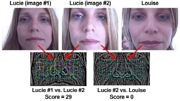 Fingerprint Shows On Facial Skin