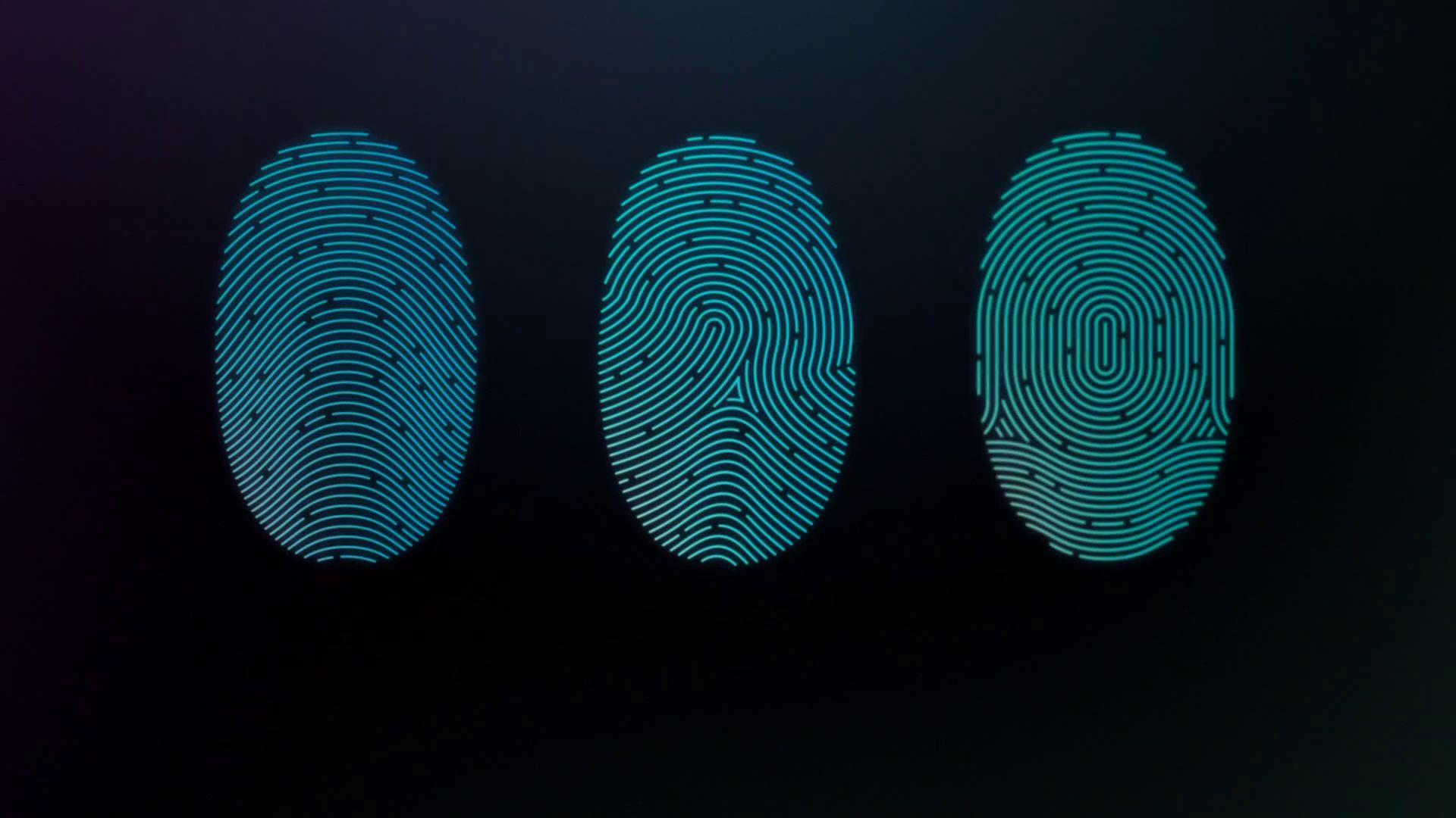 Biometrics hand and fingerprints