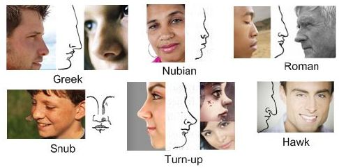 Biometrics: nose